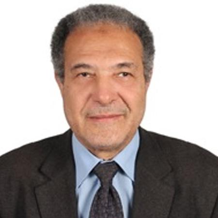 Prof. Dr. Ahmed G. Hegazi