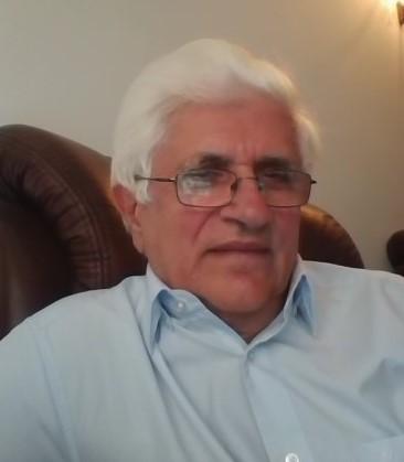 Prof. Dr. Eliade Stefanescu