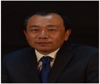 Prof. Dr. Feng Xin