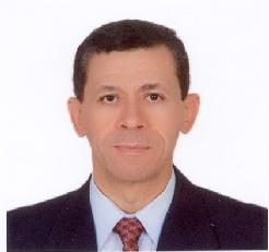 Prof. Dr.  Khamis Hassan