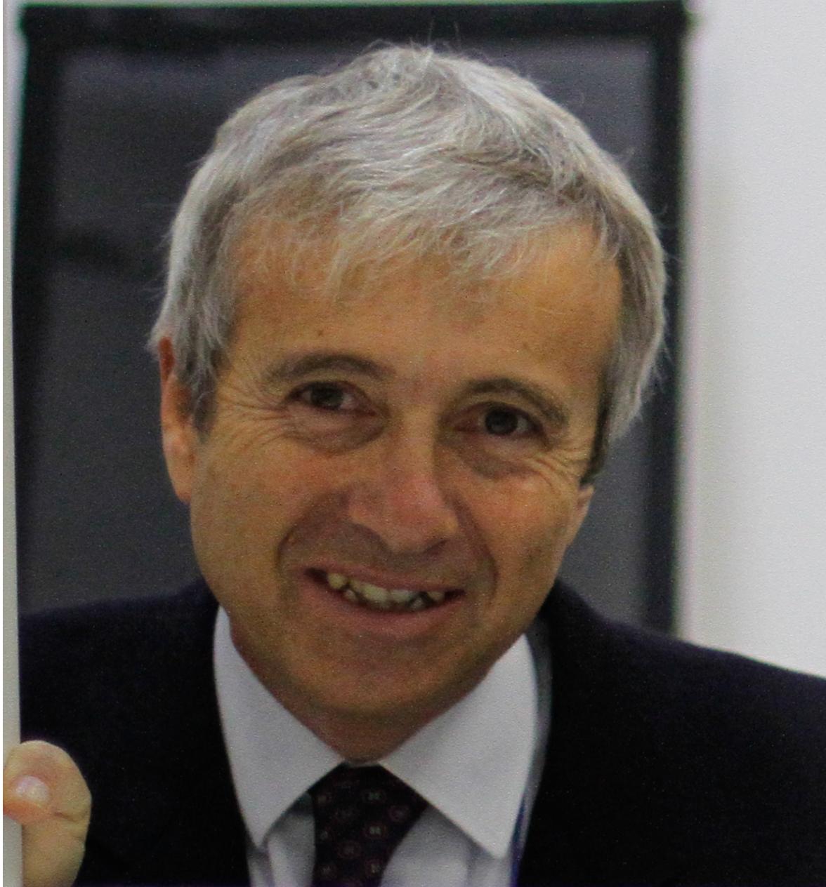 Prof. Dr. Alfonso Maffezzoli