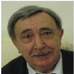 Prof. Francesco Mainardi